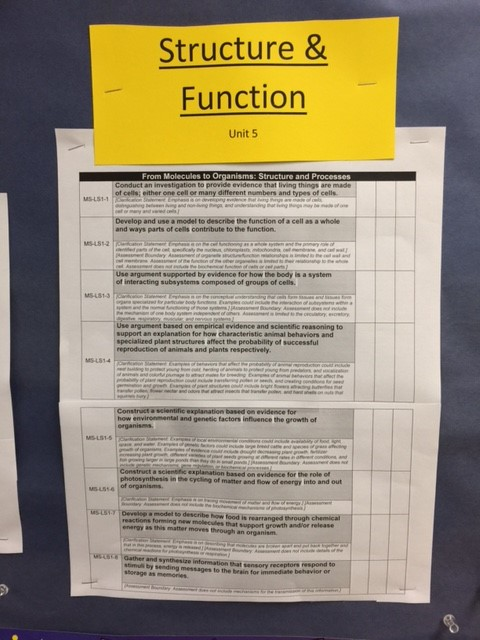 structure and function topics